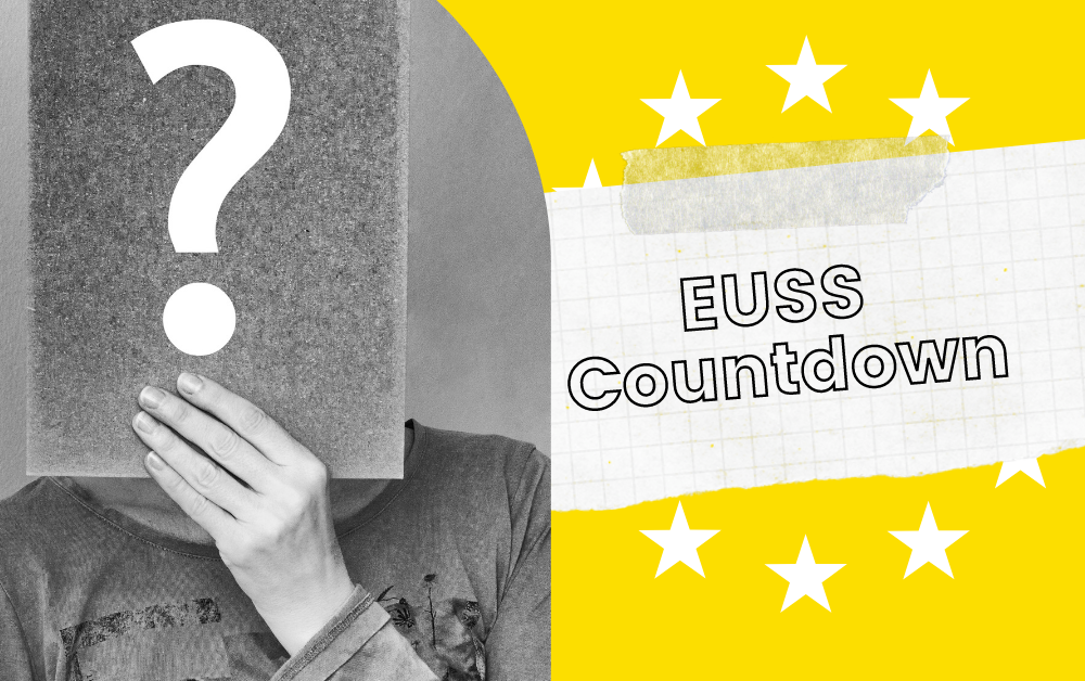 Insights from an EUSS Immigration Adviser